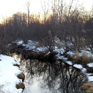 Even Winter is Nice in the Town of Elk Mound in Dunn County Wisconsin